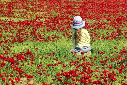 israel nature - traveling eith kids